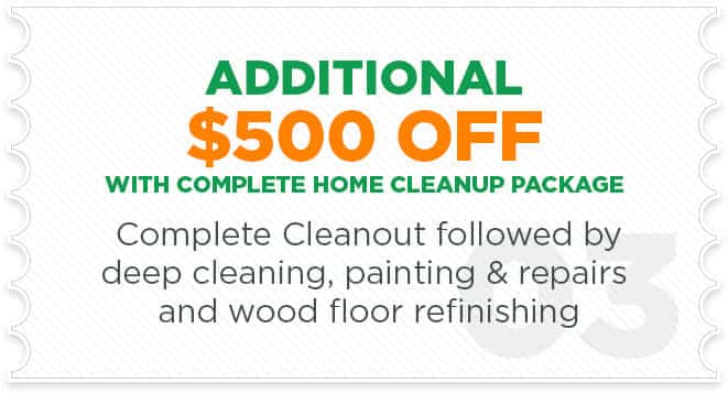$500 OFF Cleanup