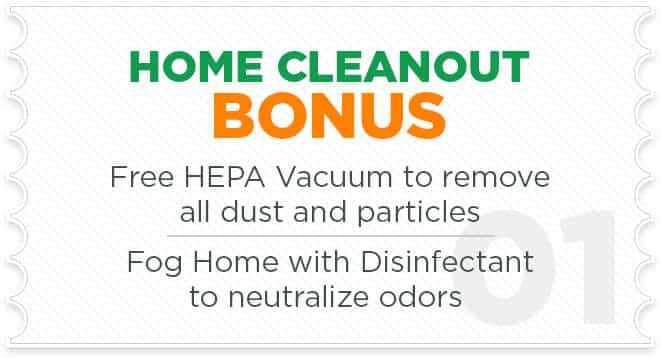 Home Cleanup and Cleanout Upgrade